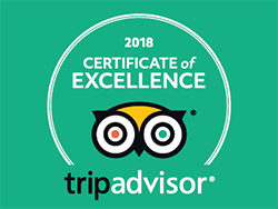 TripAdvisor 2018 Certificate of Excellence granted to SkyTrek Adventure Park!