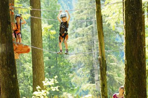 Monkey bridge on the Kids Tree Adventure @ SkyTrek Adventure Park near Revelstoke, BC