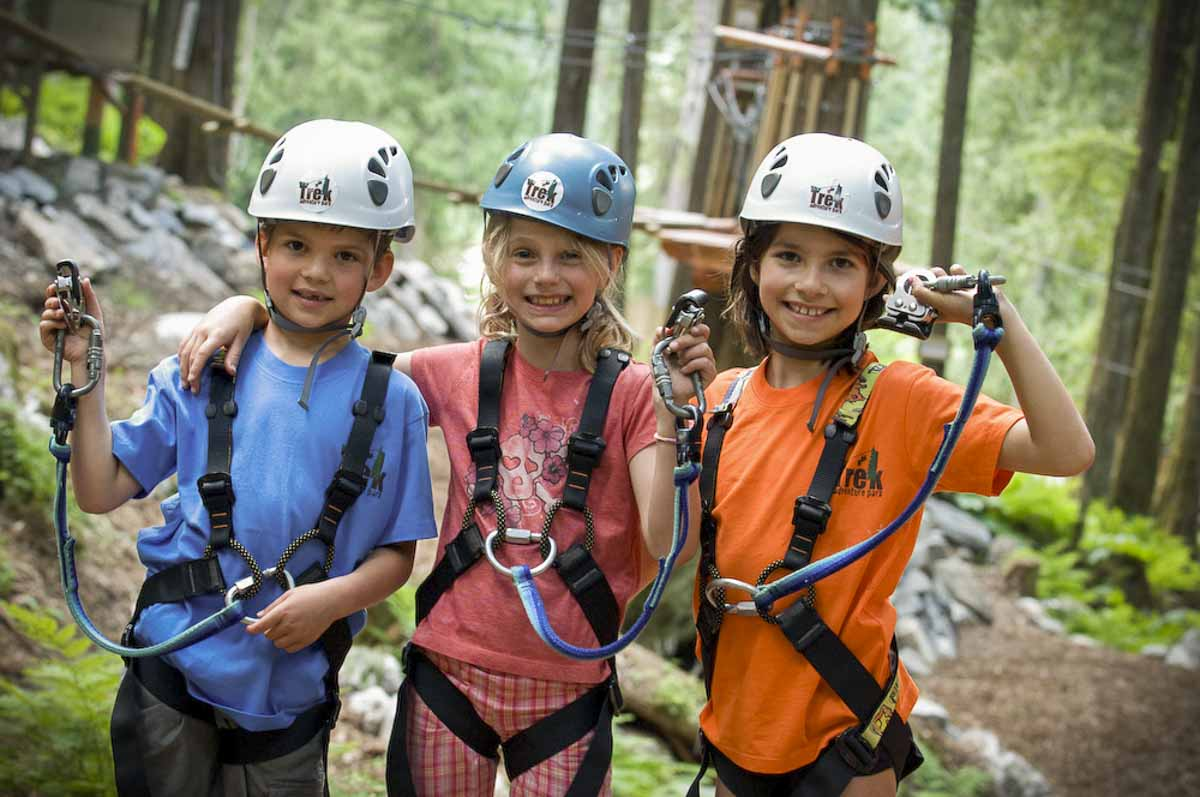 Https Www Skytrekadventurepark Com Kids Tree Adventure