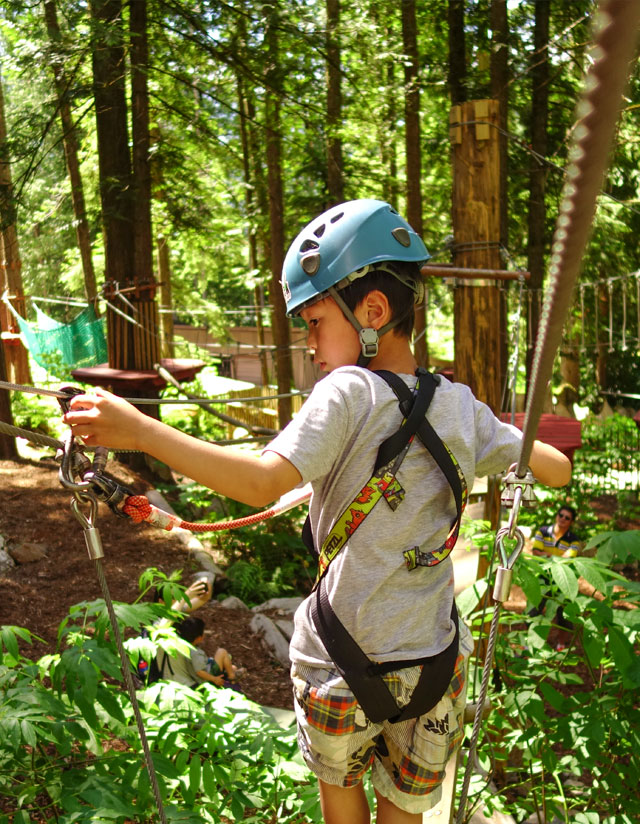 Revelstoke attraction: the Kids Tree Adventure course @ SkyTrek Adventure Park, an aerial adventure park for the whole family just outside Revelstoke, BC