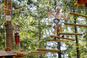 Aerial Trekking Course Family Attraction Skytrek