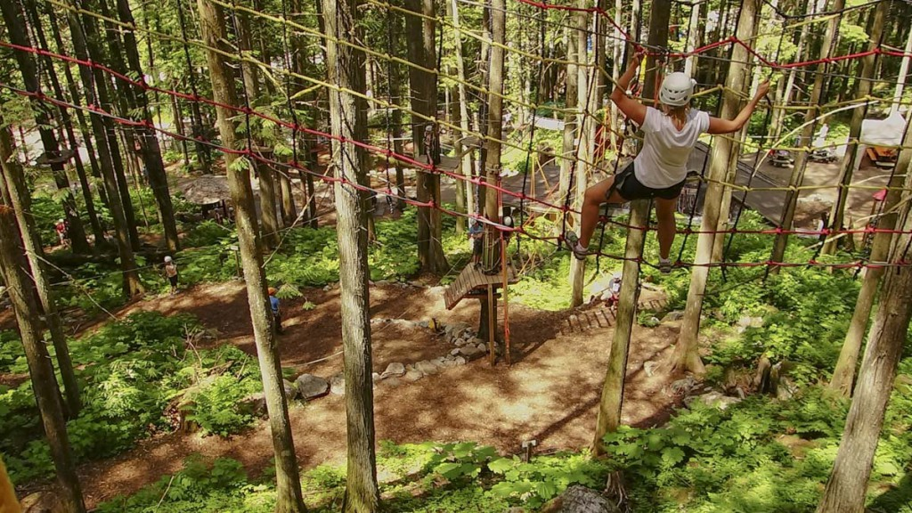 It's time to test your nerve on the Sky Course @ SkyTrek Adventure Park, BC
