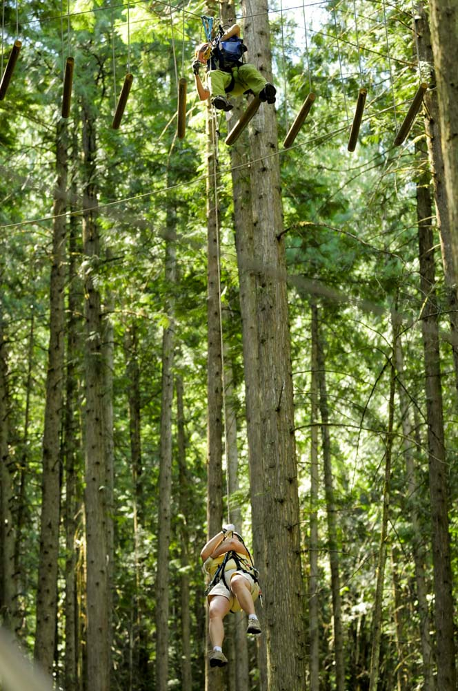 Rescue in the trees at Skytrek Adventure Park, BC
